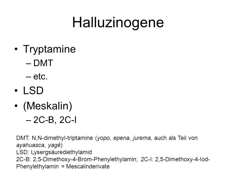 Halluzinogene Tryptamine –DMT –etc. LSD (Meskalin) –2C-B, 2C-I DMT: N,N-dimethyl-triptamine (yopo, epena, jurema, auch als Teil von ayahuasca, yagé) L
