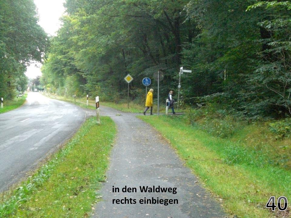 in den Waldweg rechts einbiegen