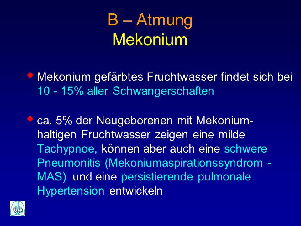 B – Atmung Mekonium Mekonium gefärbtes Fruchtwasser findet sich bei 10 - 15% aller Schwangerschaften ca. 5% der Neugeborenen mit Mekonium- haltigen Fr