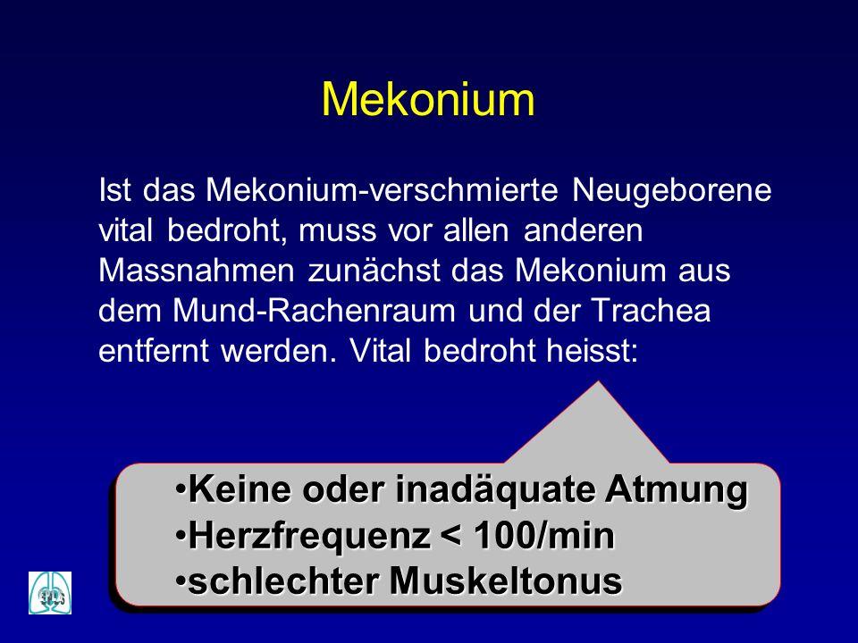Mekonium Ist das Mekonium-verschmierte Neugeborene vital bedroht, muss vor allen anderen Massnahmen zunächst das Mekonium aus dem Mund-Rachenraum und