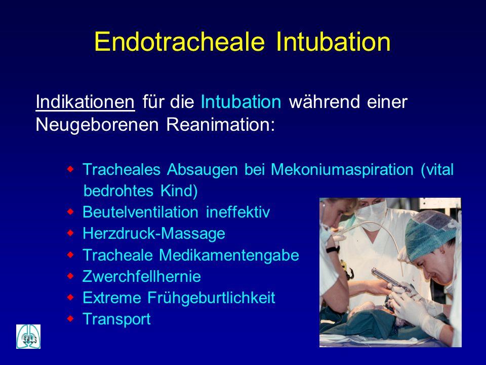 Endotracheale Intubation Indikationen für die Intubation während einer Neugeborenen Reanimation: w Tracheales Absaugen bei Mekoniumaspiration (vital b