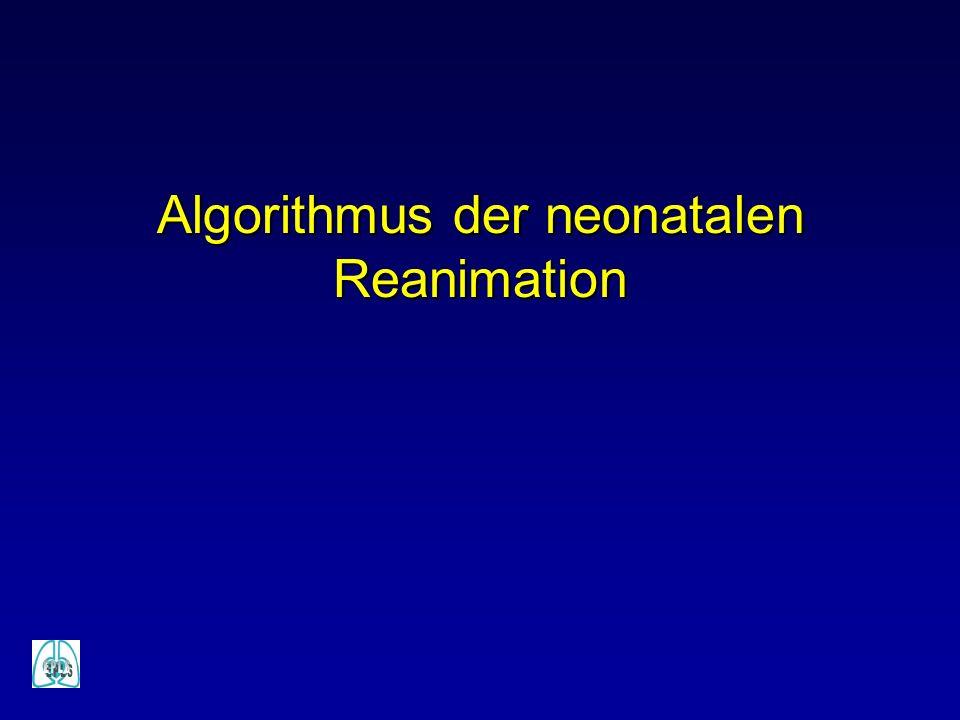 Algorithmus der neonatalen Reanimation