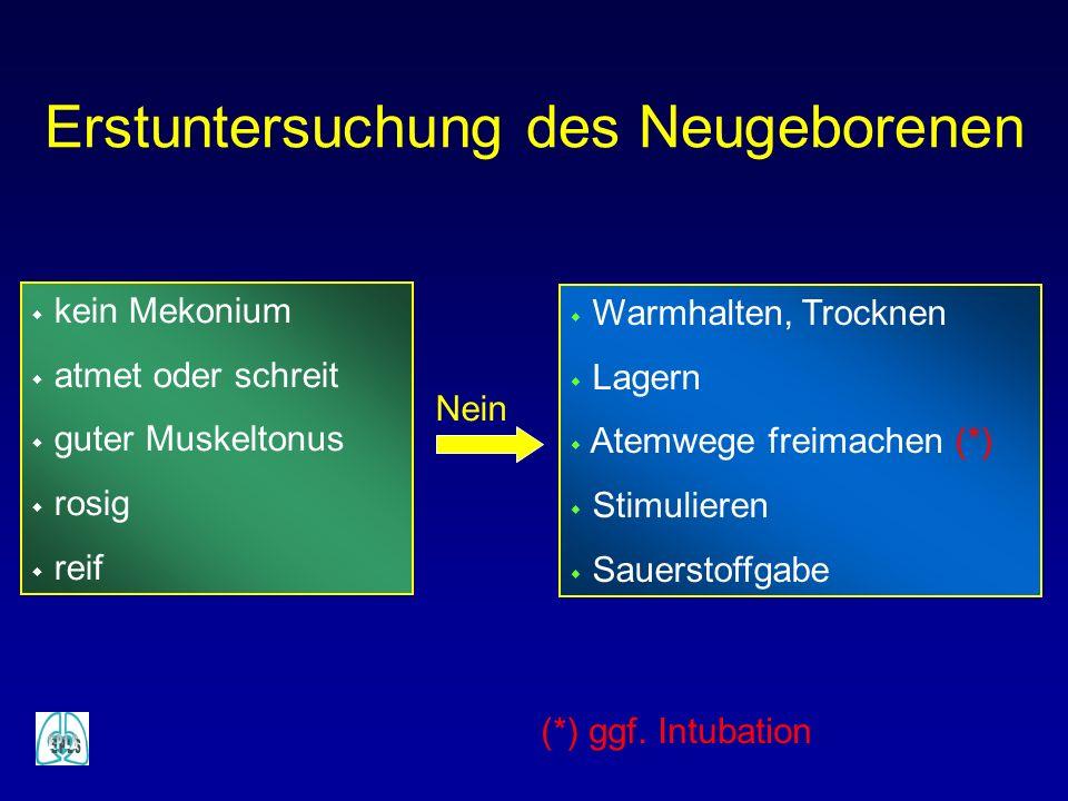 w Warmhalten, Trocknen w Lagern w Atemwege freimachen (*) w Stimulieren w Sauerstoffgabe Nein Erstuntersuchung des Neugeborenen (*) ggf. Intubation w