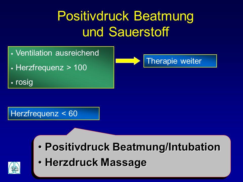 w Ventilation ausreichend w Herzfrequenz > 100 w rosig Therapie weiter Positivdruck Beatmung und Sauerstoff Herzfrequenz < 60 Positivdruck Beatmung/In