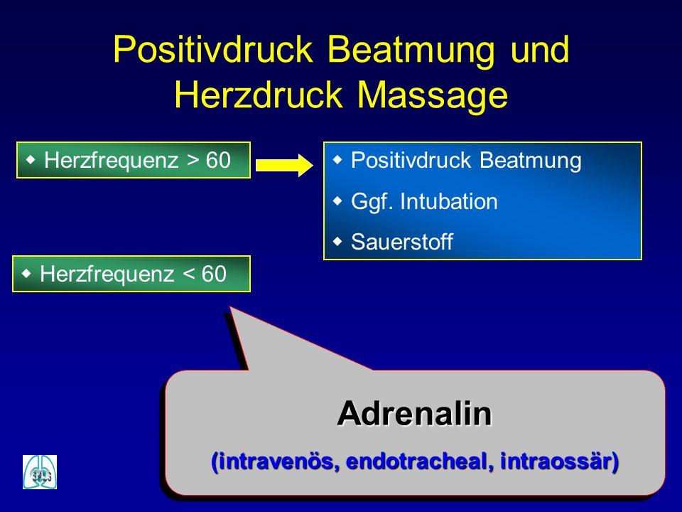 w Herzfrequenz > 60w Positivdruck Beatmung w Ggf. Intubation w Sauerstoff Positivdruck Beatmung und Herzdruck Massage w Herzfrequenz < 60 Adrenalin (i