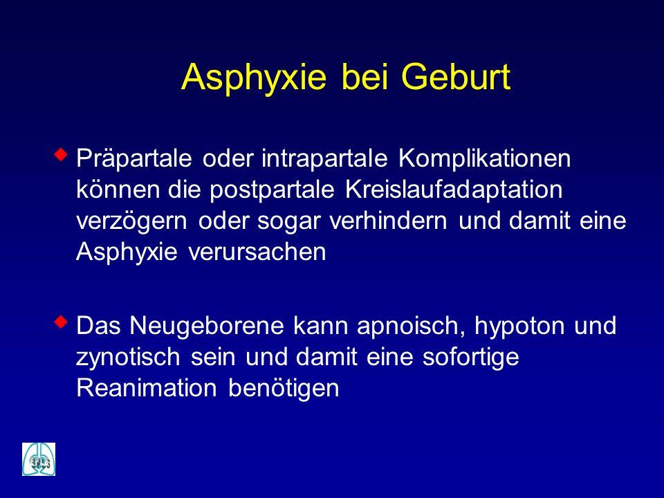 Präpartale oder intrapartale Komplikationen können die postpartale Kreislaufadaptation verzögern oder sogar verhindern und damit eine Asphyxie verursa