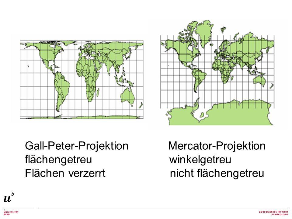 Gall-Peter-Projektion Mercator-Projektion flächengetreu winkelgetreu Flächen verzerrt nicht flächengetreu