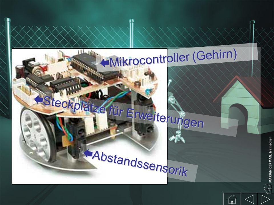 Abstandssensorik Abstandssensorik Mikrocontroller (Gehirn) Mikrocontroller (Gehirn) Steckplätze für Erweiterungen Steckplätze für Erweiterungen