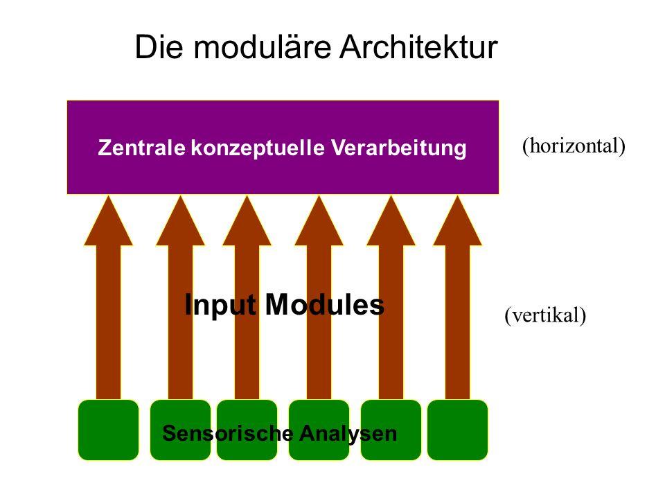 Zentrale konzeptuelle Verarbeitung Input Modules Die moduläre Architektur Sensorische Analysen (vertikal) (horizontal)