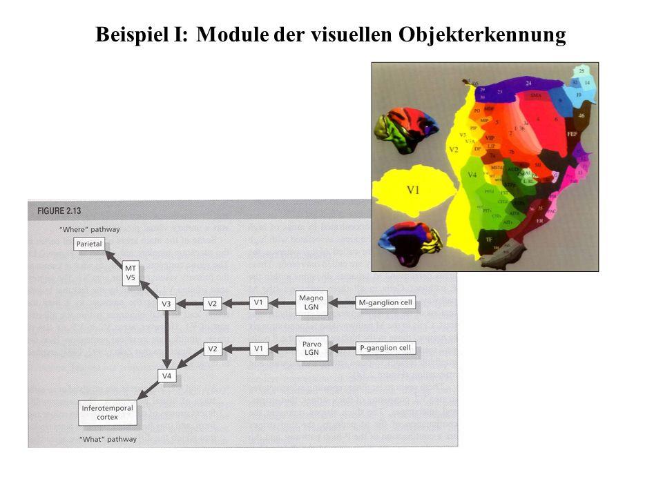 auditives Signal kr o: k s Ω Dekodierung Aktivierung lexikalischer Einträge Hörer Beispiel II: Auditive Worterkennung Marslen-Wilson, 1990