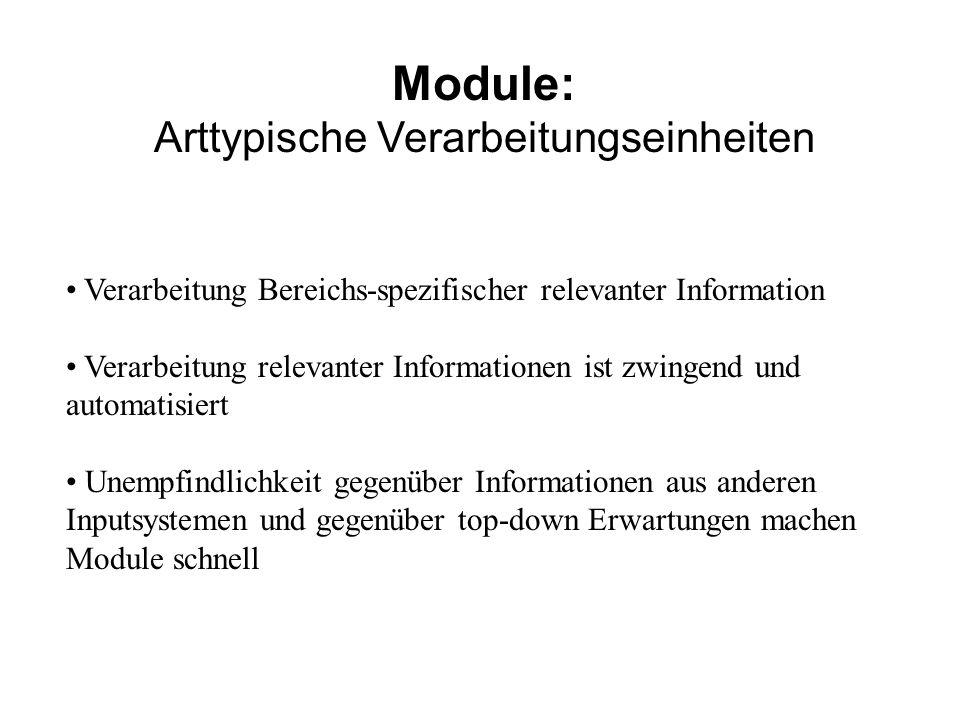 Module: Arttypische Verarbeitungseinheiten Verarbeitung Bereichs-spezifischer relevanter Information Verarbeitung relevanter Informationen ist zwingen