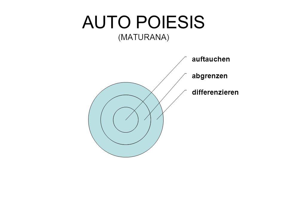 AUTO POIESIS (MATURANA) auftauchen abgrenzen differenzieren