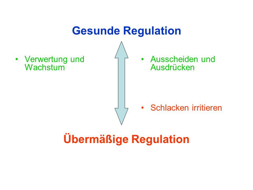 Gesunde Regulation Verwertung und Wachstum Ausscheiden und Ausdrücken Schlacken irritieren Übermäßige Regulation