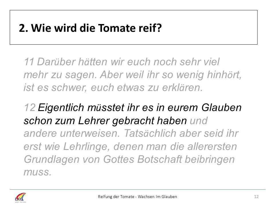 2. Wie wird die Tomate reif? 12Reifung der Tomate - Wachsen im Glauben 11 Dar ü ber h ä tten wir euch noch sehr viel mehr zu sagen. Aber weil ihr so w