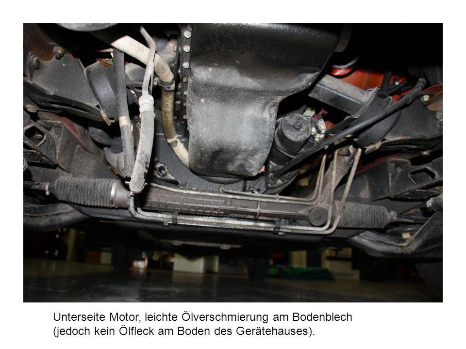 Unterseite Motor, leichte Ölverschmierung am Bodenblech (jedoch kein Ölfleck am Boden des Gerätehauses).