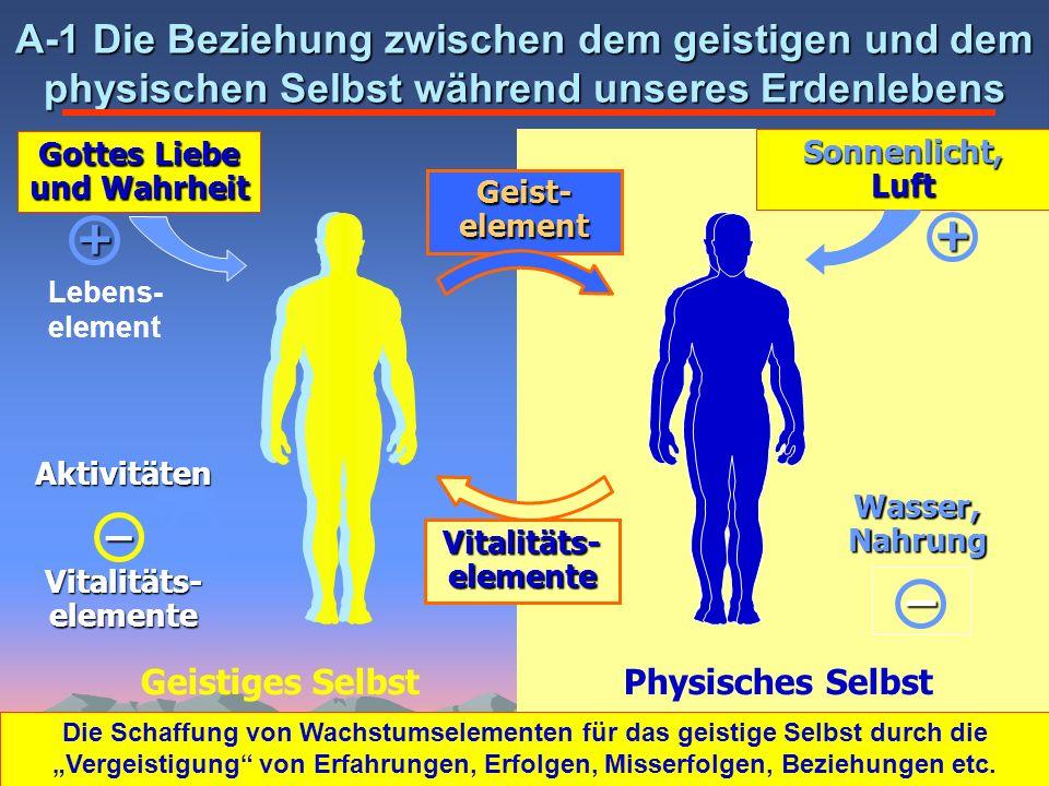 Physisches SelbstGeistiges Selbst A-1 Die Beziehung zwischen dem geistigen und dem physischen Selbst während unseres Erdenlebens Vitalitäts-elemente G
