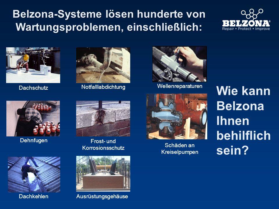 Belzona-Systeme lösen hunderte von Wartungsproblemen, einschließlich: Wie kann Belzona Ihnen behilflich sein? Wellenreparaturen Frost- und Korrosionss