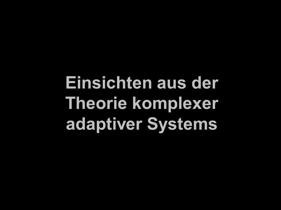 Einsichten aus der Theorie komplexer adaptiver Systems