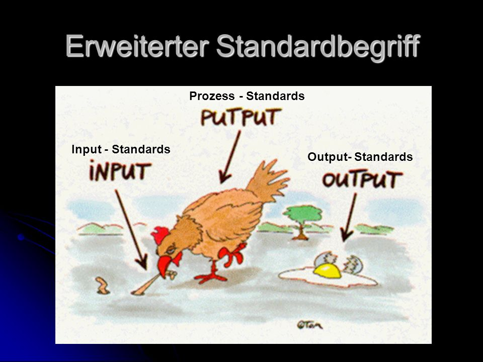 Erweiterter Standardbegriff Input - Standards Prozess - Standards Output- Standards