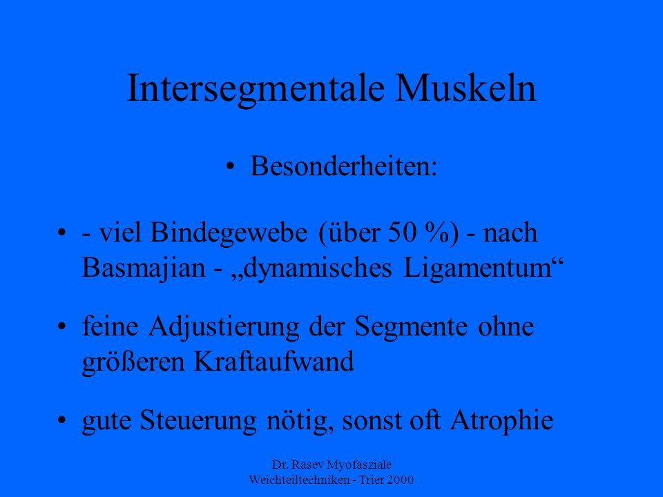 Dr. Rasev Myofasziale Weichteiltechniken - Trier 2000 Intersegmentale Muskeln Besonderheiten: - viel Bindegewebe (über 50 %) - nach Basmajian - dynami