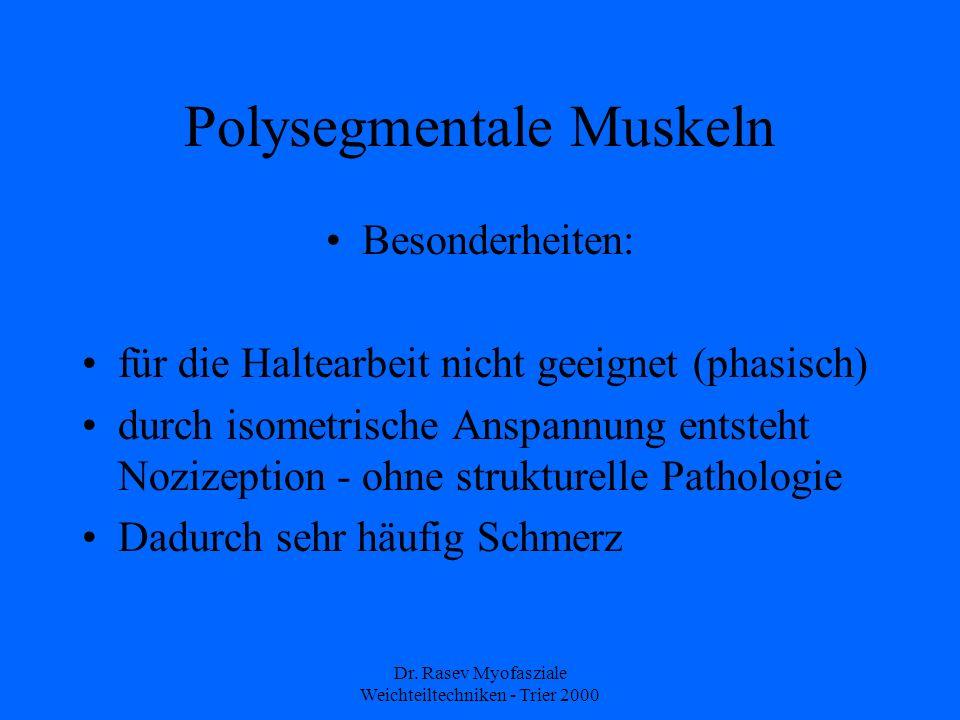 Dr. Rasev Myofasziale Weichteiltechniken - Trier 2000 Polysegmentale Muskeln Besonderheiten: für die Haltearbeit nicht geeignet (phasisch) durch isome