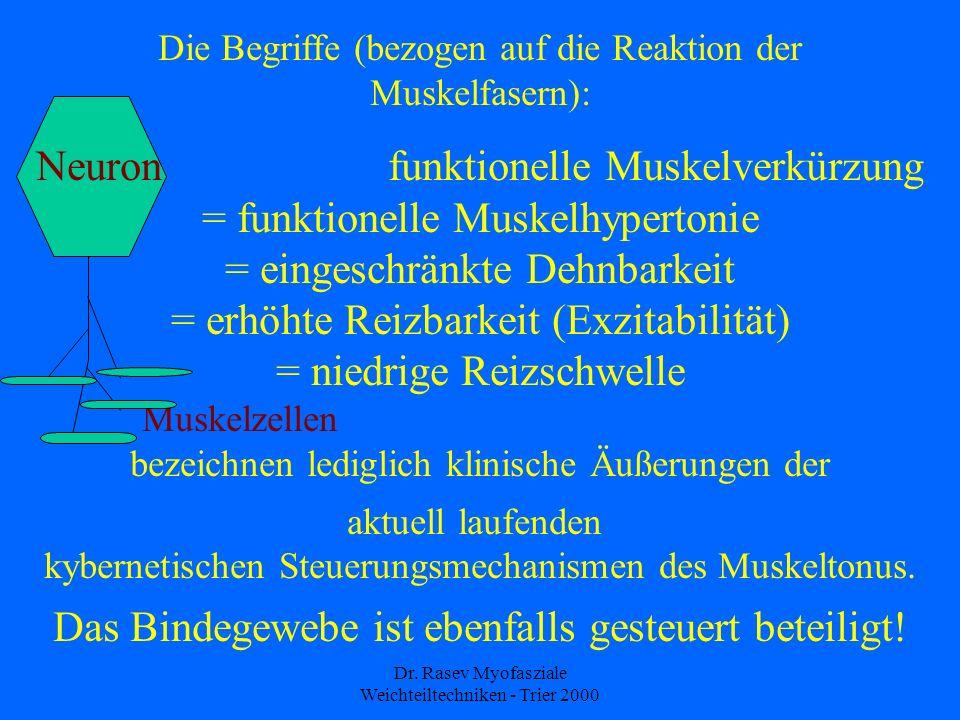 Dr. Rasev Myofasziale Weichteiltechniken - Trier 2000 Die Begriffe (bezogen auf die Reaktion der Muskelfasern): Neuron funktionelle Muskelverkürzung =