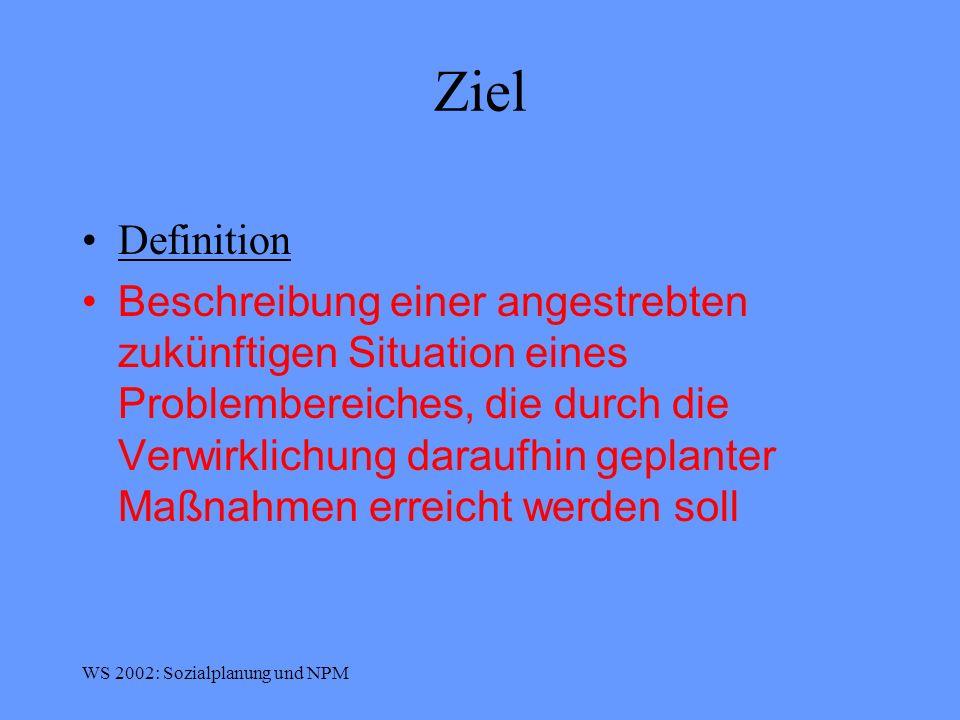 WS 2002: Sozialplanung und NPM Stadt Graz: Ämterstruktur ALT