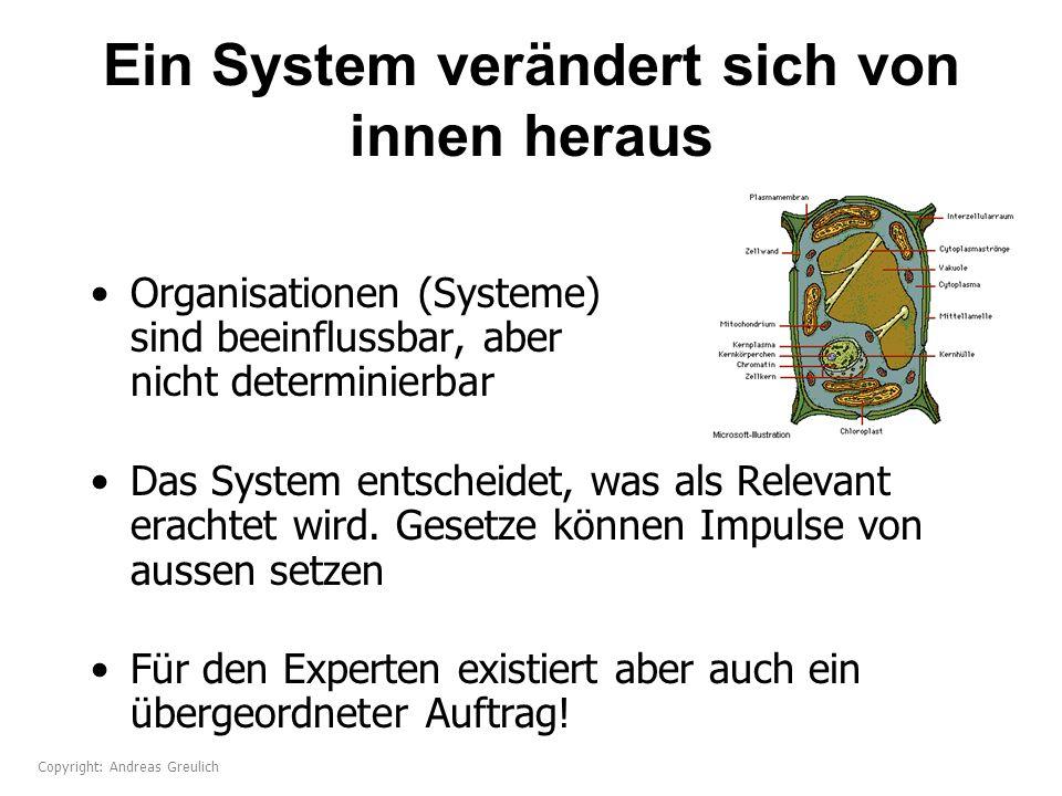 Ein System verändert sich von innen heraus Organisationen (Systeme) sind beeinflussbar, aber nicht determinierbar Das System entscheidet, was als Rele