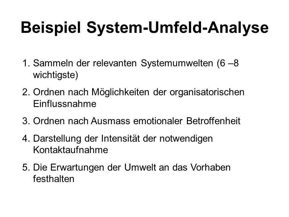 Beispiel System-Umfeld-Analyse 1.Sammeln der relevanten Systemumwelten (6 –8 wichtigste) 2.Ordnen nach Möglichkeiten der organisatorischen Einflussnah