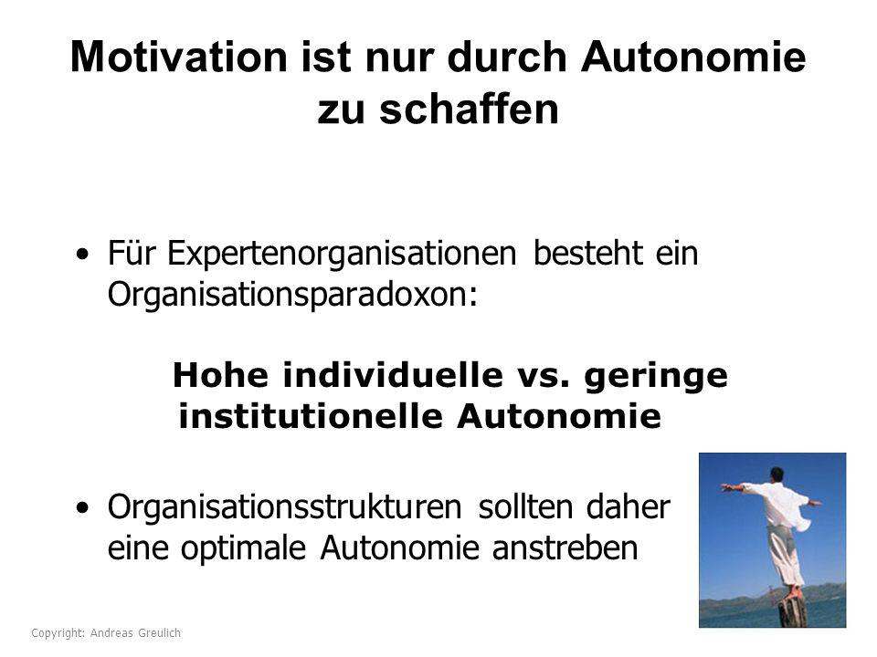 Motivation ist nur durch Autonomie zu schaffen Für Expertenorganisationen besteht ein Organisationsparadoxon: Hohe individuelle vs. geringe institutio