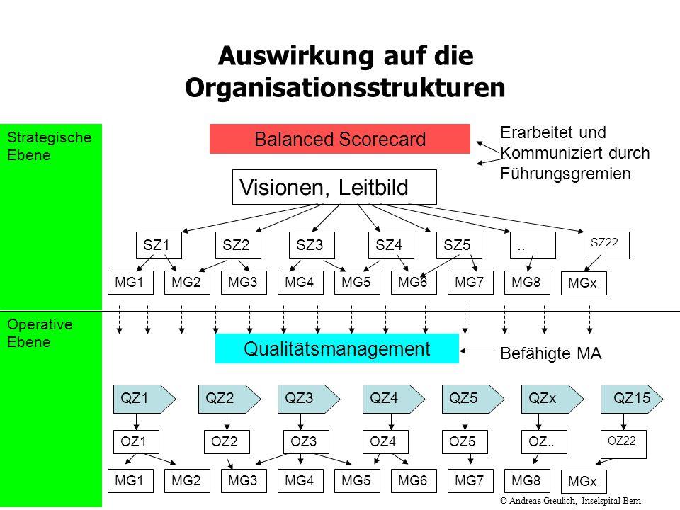 Auswirkung auf die Organisationsstrukturen Balanced Scorecard SZ1SZ2SZ3SZ4SZ5 SZ22.. MG1MG2MG3MG4MG5 MGx MG8MG7MG6 Qualitätsmanagement Visionen, Leitb