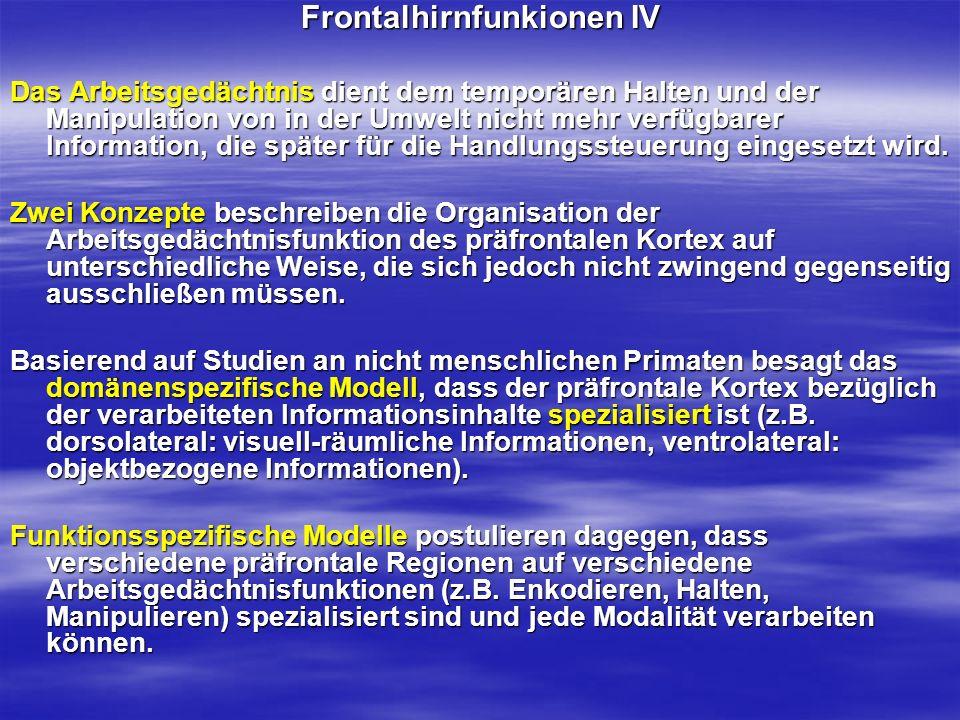 Frontalhirnfunkionen IV Das Arbeitsgedächtnis dient dem temporären Halten und der Manipulation von in der Umwelt nicht mehr verfügbarer Information, d