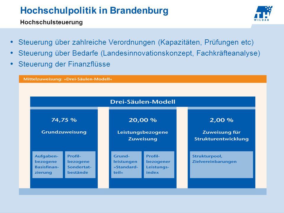 Hochschulpolitik in Brandenburg Hochschulsteuerung Steuerung über zahlreiche Verordnungen (Kapazitäten, Prüfungen etc) Steuerung über Bedarfe (Landesi
