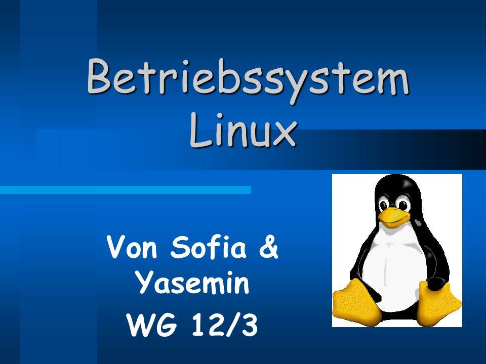 Betriebssystem Linux Betriebssystem Linux Von Sofia & Yasemin WG 12/3