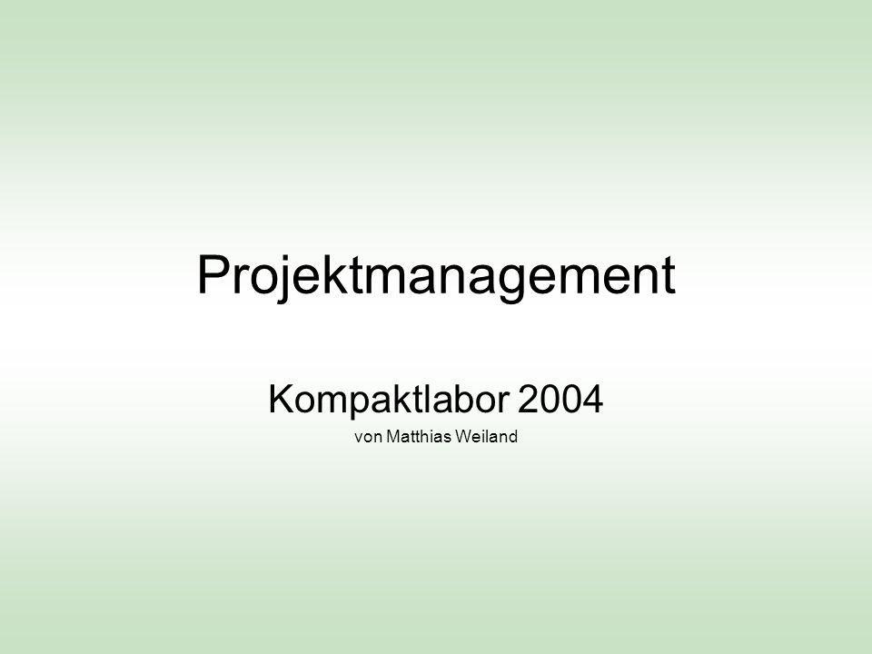 Projektion auf den Ablauf Projektstrukturenplan – Aufgaben- und Teameinteilung Terminplanung und Meilenstein Risikoanalyse Aufwandsabschätzung und Kostenplanung Referat Projektmanagement, Kompaktlabor 2004, Matthias Weiland