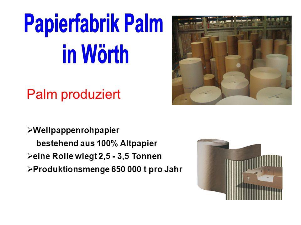 Wellpappenrohpapier bestehend aus 100% Altpapier eine Rolle wiegt 2,5 - 3,5 Tonnen Produktionsmenge 650 000 t pro Jahr Palm produziert