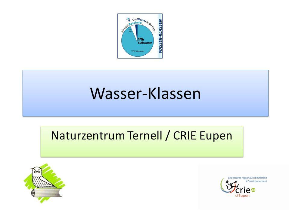 Wasser-Klassen Naturzentrum Ternell / CRIE Eupen