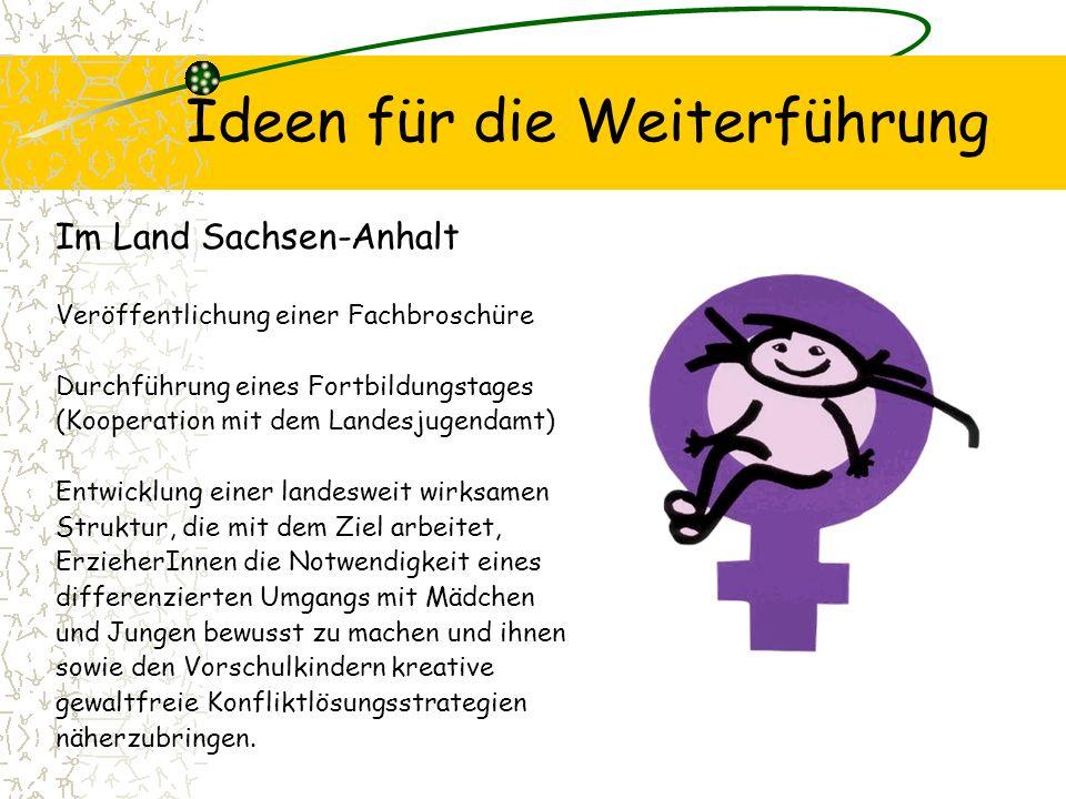 Ideen für die Weiterführung Im Land Sachsen-Anhalt Veröffentlichung einer Fachbroschüre Durchführung eines Fortbildungstages (Kooperation mit dem Land