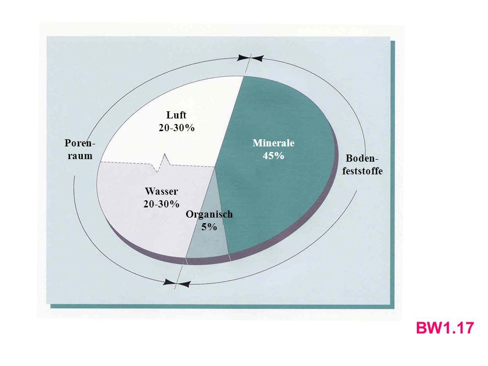 Luft 20-30% Wasser 20-30% Minerale 45% Organisch 5% Poren- raum Boden- feststoffe BW1.17