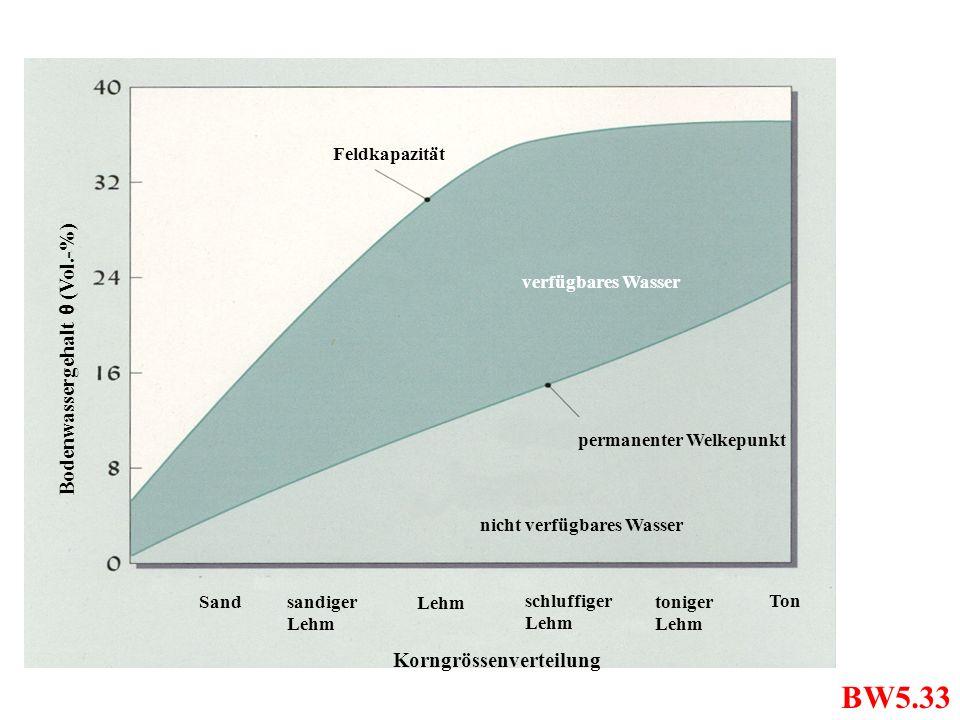 Feldkapazität Ton verfügbares Wasser permanenter Welkepunkt Lehm schluffiger Lehm Sandsandiger Lehm toniger Lehm Bodenwassergehalt θ (Vol.-%) nicht ve