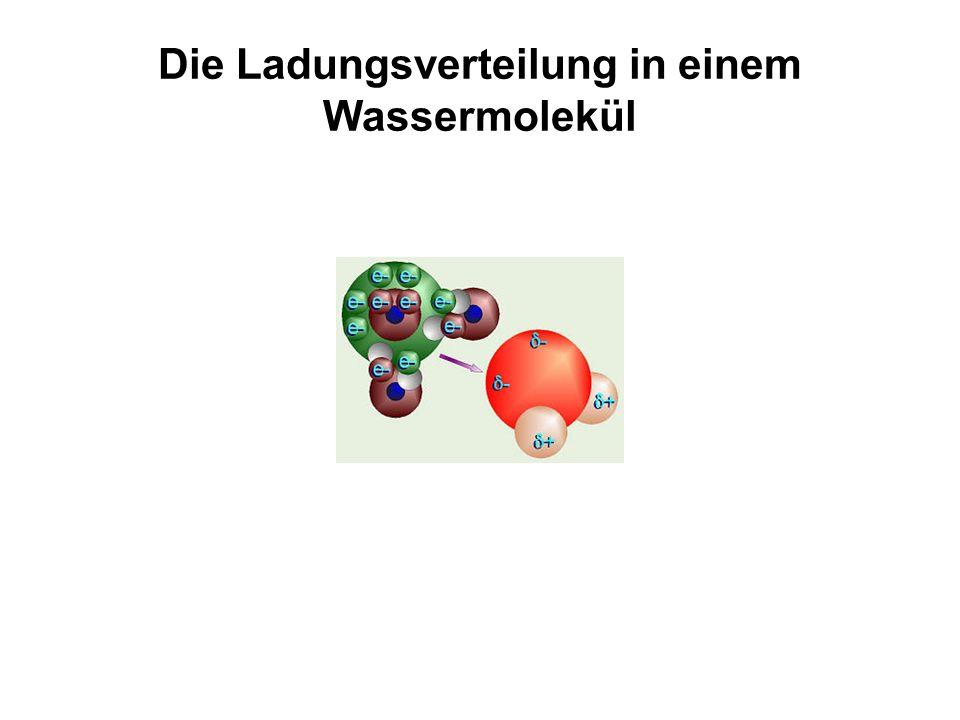 Die Ladungsverteilung in einem Wassermolekül