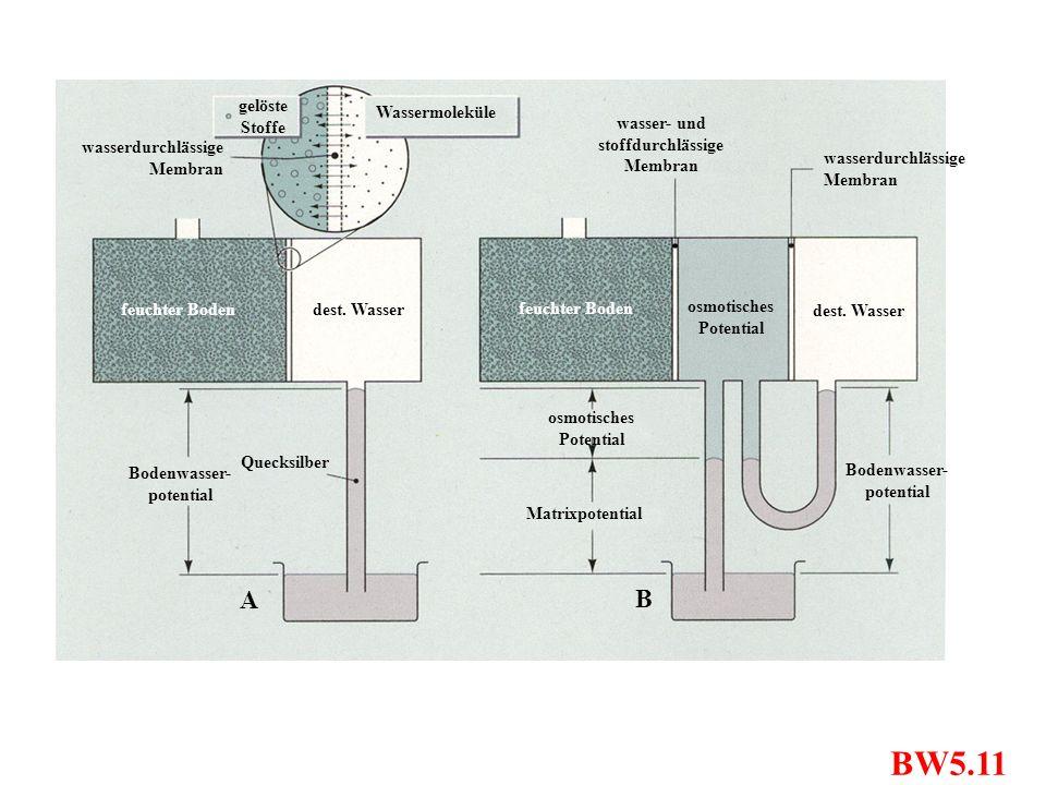 BW5.11 wasserdurchlässige Membran wasser- und stoffdurchlässige Membran dest. Wasser feuchter Boden dest. Wasser osmotisches Potential Matrixpotential