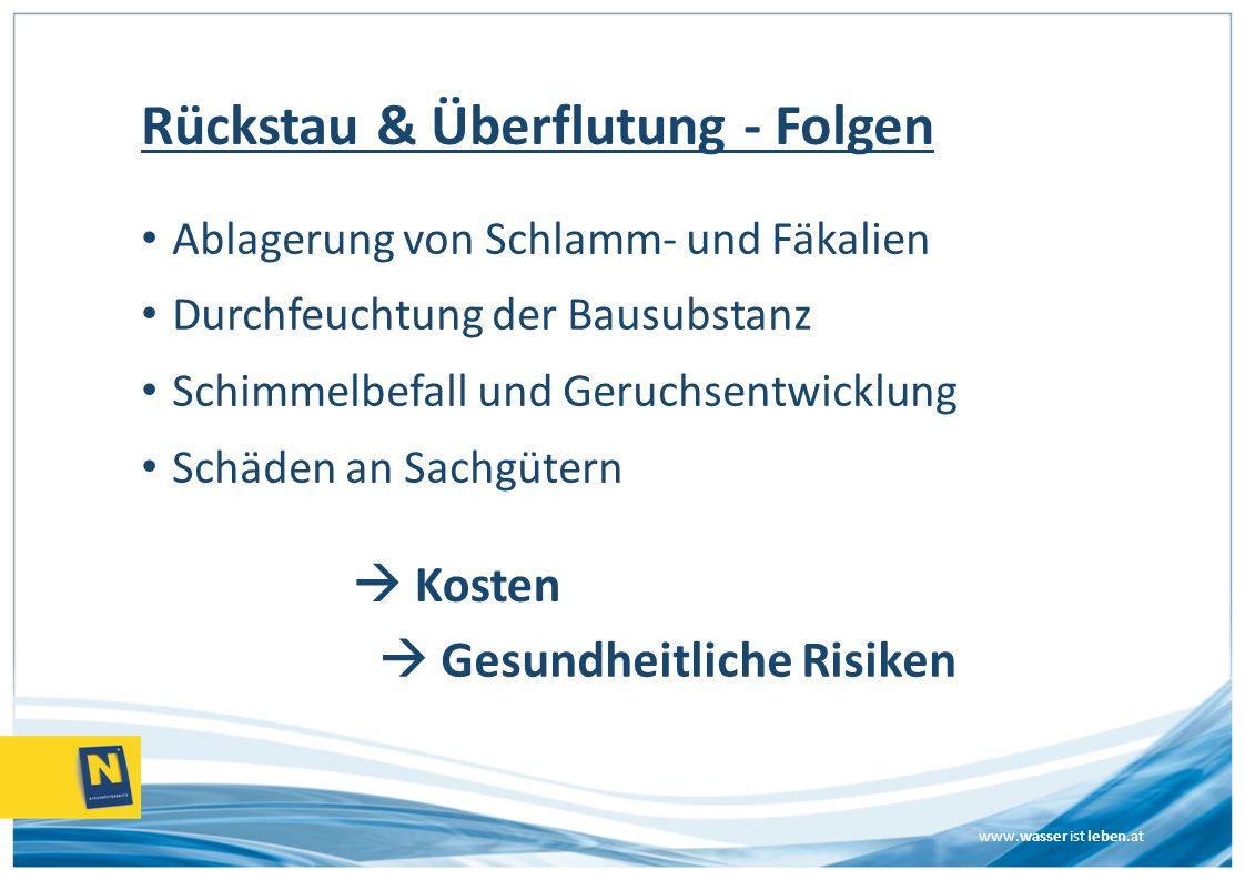 www.wasser ist leben.at Rückstau & Überflutung - Folgen Ablagerung von Schlamm- und Fäkalien Durchfeuchtung der Bausubstanz Schimmelbefall und Geruchs