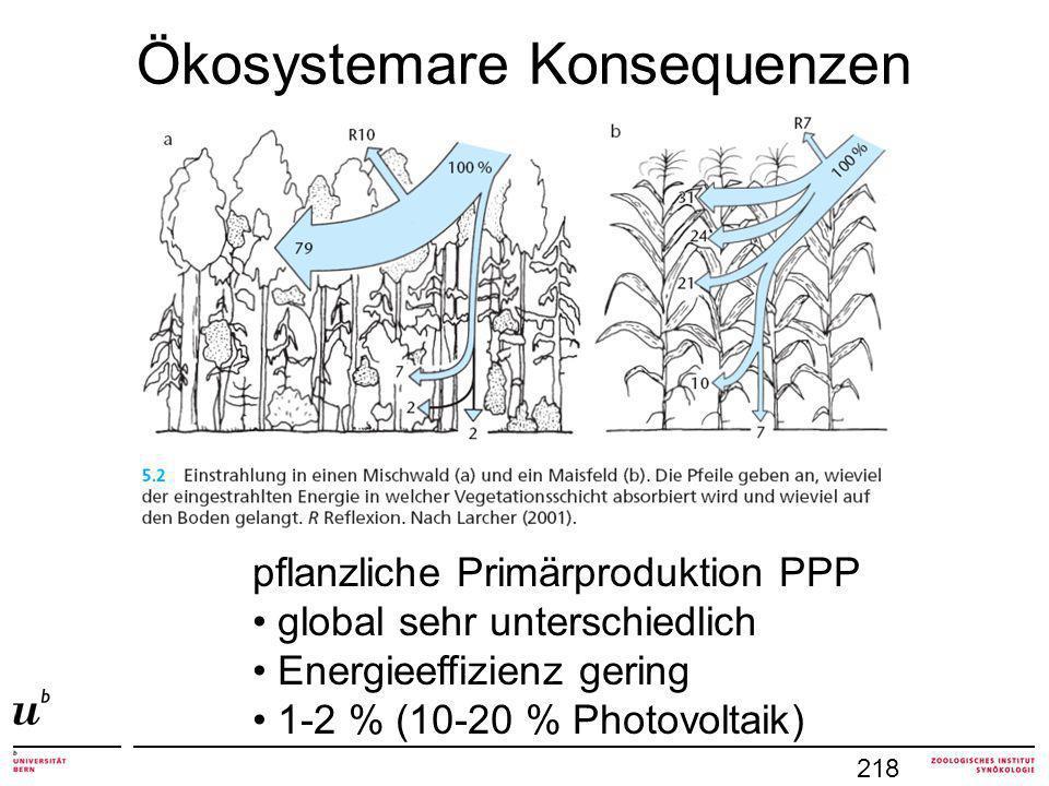 Ökosystemare Konsequenzen 218 pflanzliche Primärproduktion PPP global sehr unterschiedlich Energieeffizienz gering 1-2 % (10-20 % Photovoltaik)