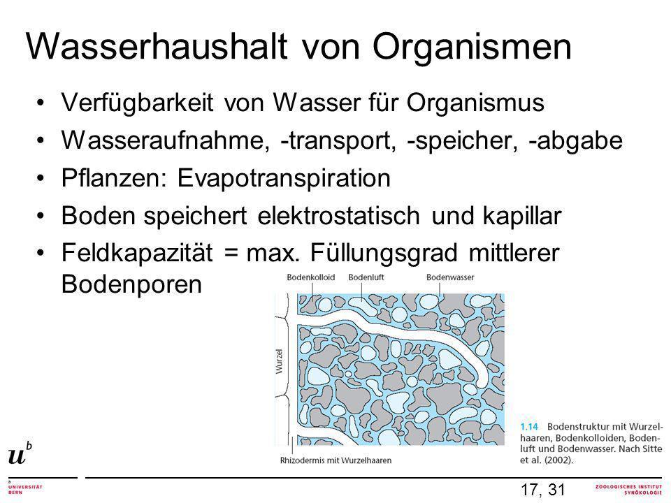 Verfügbarkeit von Wasser für Organismus Wasseraufnahme, -transport, -speicher, -abgabe Pflanzen: Evapotranspiration Boden speichert elektrostatisch und kapillar Feldkapazität = max.