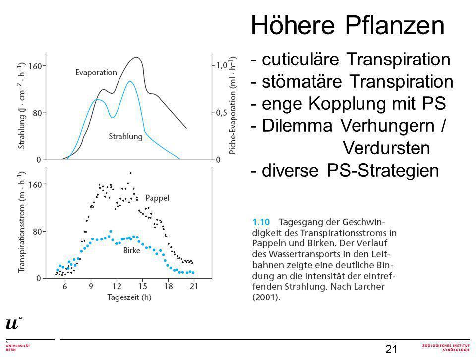 21 Höhere Pflanzen - cuticuläre Transpiration - stömatäre Transpiration - enge Kopplung mit PS - Dilemma Verhungern / Verdursten - diverse PS-Strategien