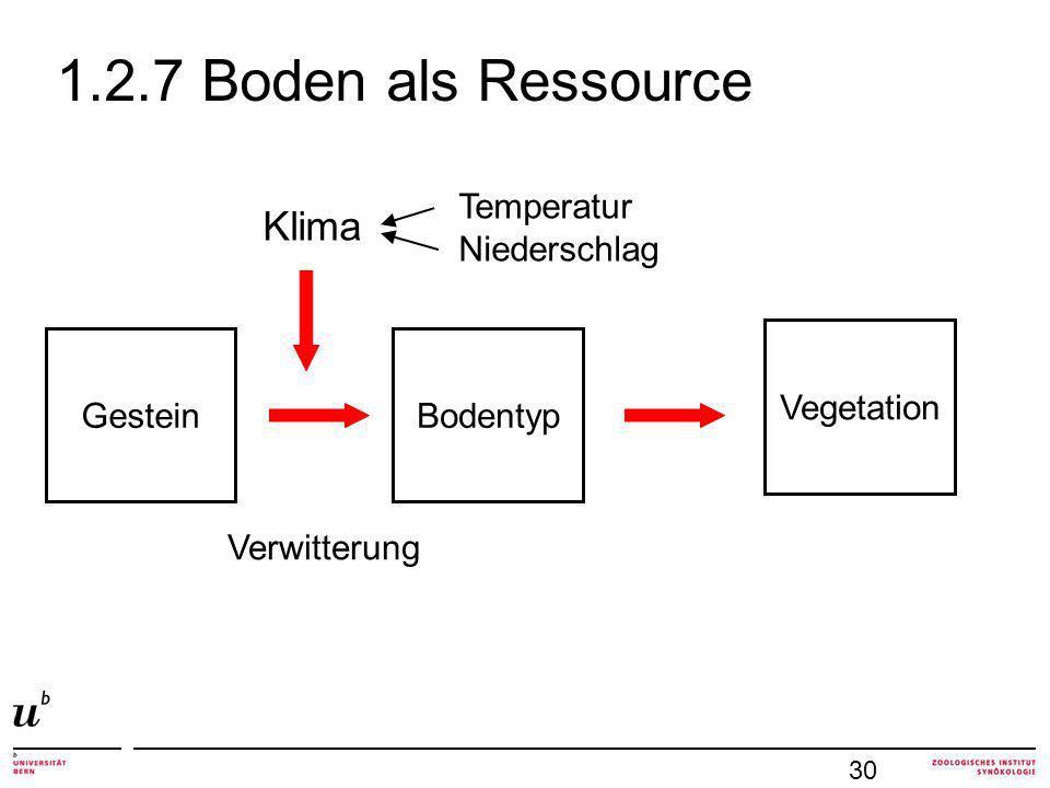 1.2.7 Boden als Ressource GesteinBodentyp Vegetation Klima Temperatur Niederschlag Verwitterung 30