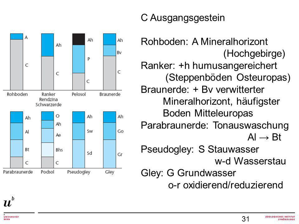 C Ausgangsgestein Rohboden: A Mineralhorizont (Hochgebirge) Ranker: +h humusangereichert (Steppenböden Osteuropas) Braunerde: + Bv verwitterter Mineralhorizont, häufigster Boden Mitteleuropas Parabraunerde: Tonauswaschung Al Bt Pseudogley: S Stauwasser w-d Wasserstau Gley: G Grundwasser o-r oxidierend/reduzierend 31