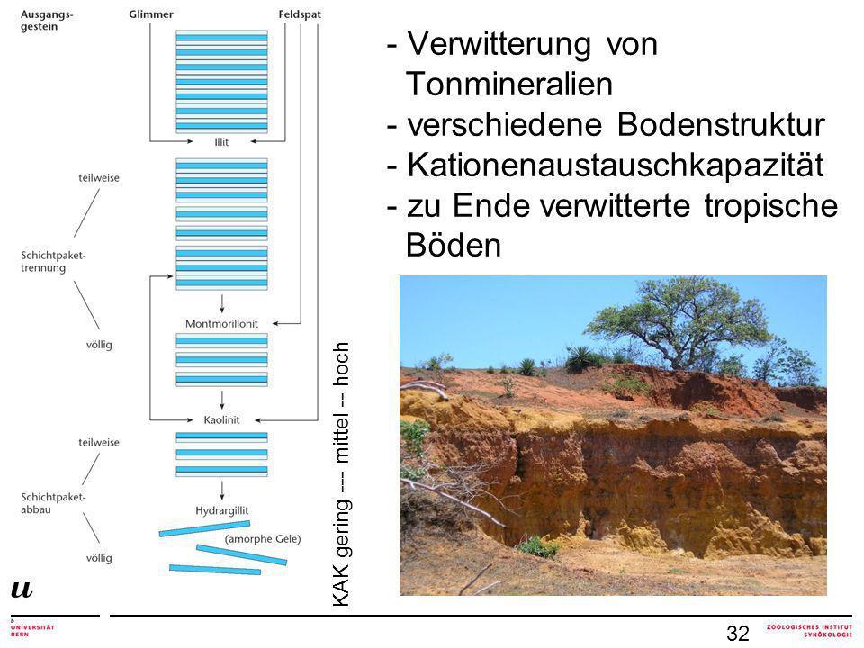 - Verwitterung von Tonmineralien - verschiedene Bodenstruktur - Kationenaustauschkapazität - zu Ende verwitterte tropische Böden 32 KAK gering --- mit