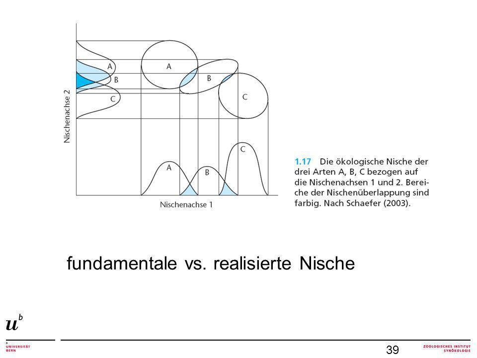 39 fundamentale vs. realisierte Nische